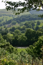SUMMER VALLEY LLANGOLLEN